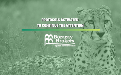Protocols activated to continue the attention