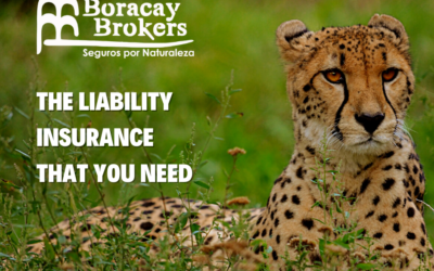 The liability insurance that you need